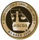 Association of criminal defense lawyers